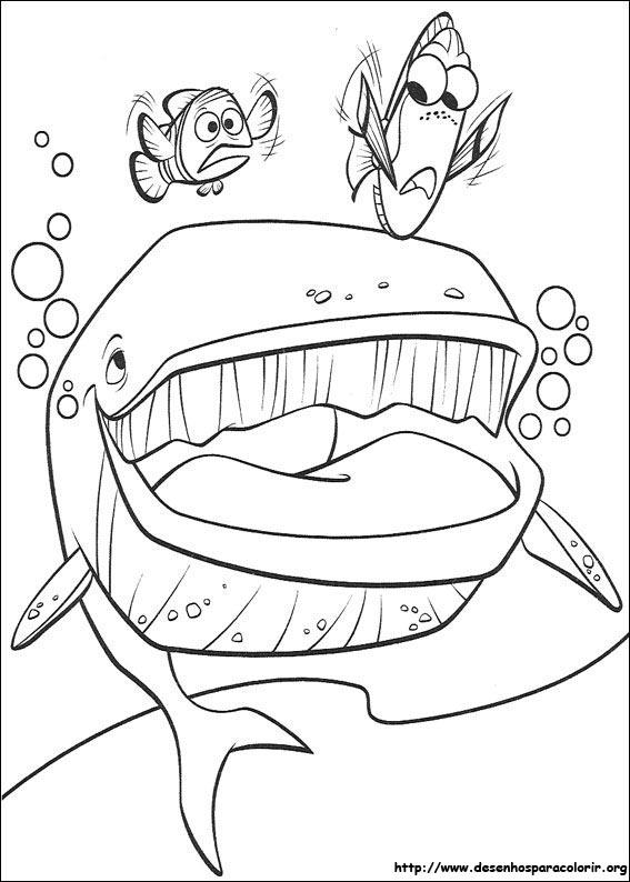 A Procura De Nemo Para Colorir