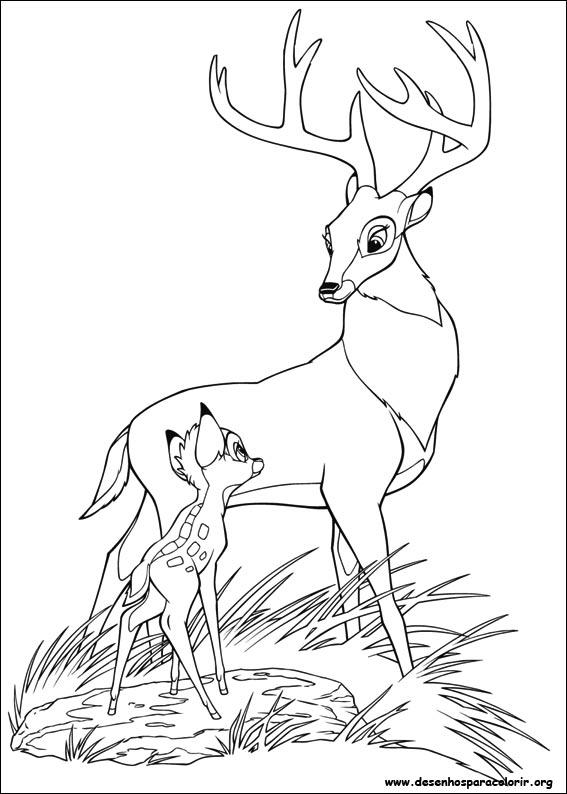 Desenhos Do Bambi 2 Para Colorir